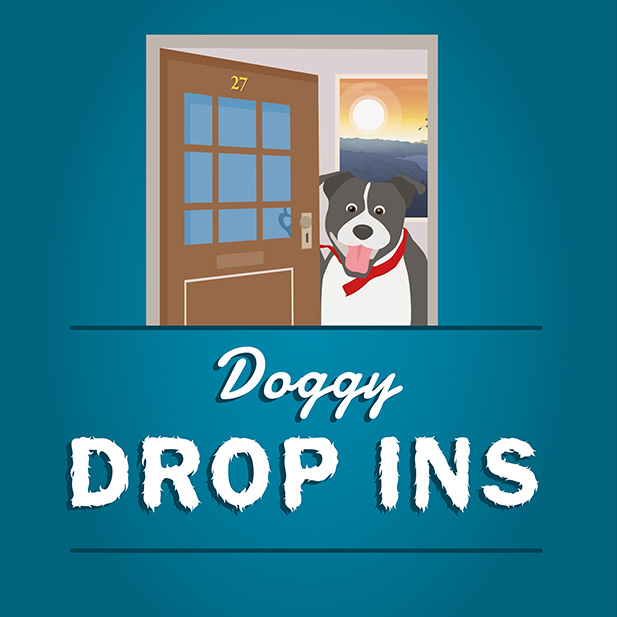 Doggy drop ins service icon