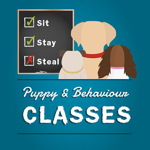Puppy and behaviour classes service icon
